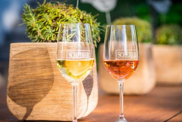 Zwei Weingläser in der Sonne mit Weißwein und Rotwein
